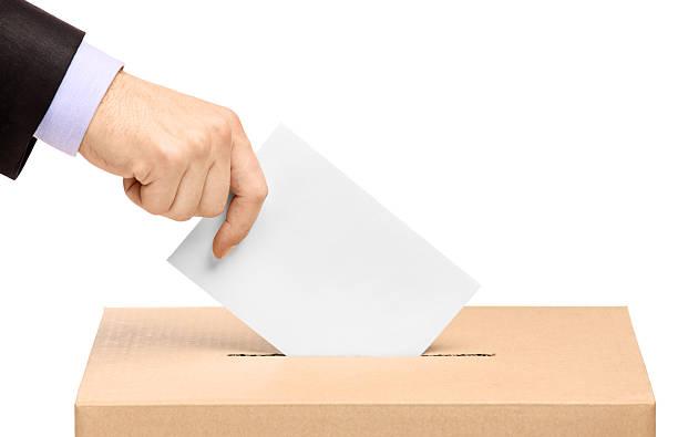 voto hermano mayor